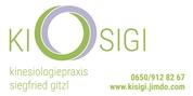 Siegfried Gitzl -  Kinesiologiepraxis