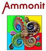 AMMONIT EDV Consulting GmbH