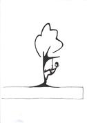 Remy Maria Gschwandtner -  Baumpflege
