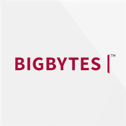David Lang - BIGBYTES webservices
