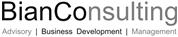 BianConsulting GmbH