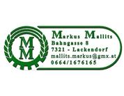 Ing. Markus Mallits