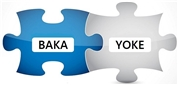 BAKA-YOKE Consulting e.U.