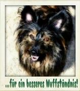 Sabine Horak -  Wuffständnis - Hundetraining & Verhaltensberatung