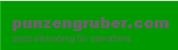 Dr.techn. Dieter Punzengruber - punzengruber.com