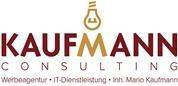 Mario Kaufmann -  Kaufmann Consulting