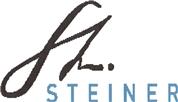 Ing. Robert Steiner -  Ihre interne Revision