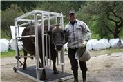 Bruno Kessler - Klauenpflege beim Rind