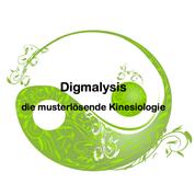 Oliver Ritter - Digmalysis - die musterlösende Kinesiologie