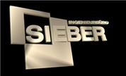 Planungsbüro Sieber Gesellschaft m.b.H. - INGENIEURBÜRO SIEBER