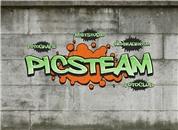 PICSTEAM Fotografie-Club