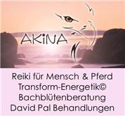 Daniela Wokatsch -  Akina - Praxis für Ihre Wohlfühlbalance