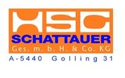 HSG - Schattauer Gesellschaft mbH & CoKG