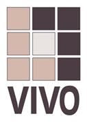 VIVO IT Beratung und Dienstleistungs GmbH - 'VIVO IT'