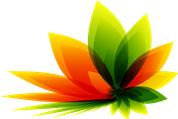 GmbH zu verkaufen; Import und Vertrieb von Nahrungsergänzungsmittel