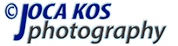 Jovica Kosanovic - joca kos Photography