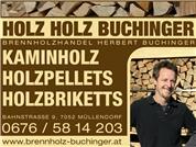 HOLZHOLZ-BUCHINGER e.U. - HOLZ HOLZ BUCHINGER