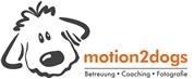Mag. rer. soc. oec. Alexandra Lindenthal - motion2 marketing