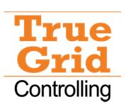 Mag. Robert Kohl -  True Grid Controlling