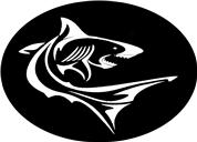 Sharktime e.U. - Atemreglerservice