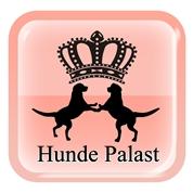 Hunde Palast M. Hauger e.U. - Hunde Palast Hauger