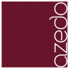 Azedo IT Consulting & Services KG - azedo IT Consulting & Services KG