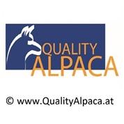 Quality Alpaca KG - Import & Handel mit Alpaka-Produkten