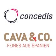 concedis Digitalagentur GmbH